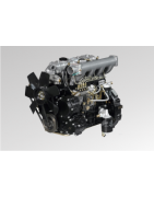 Silnik Chiński NB485BPG HC-HANGCHA