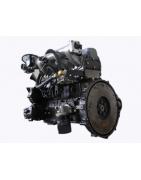 Silnik Chiński A495BPG - 3 HC-HANGCHA