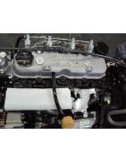 Silnik Isuzu 4JG2PE HC-HANGCHA