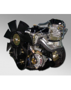 Silnik Chiński WF491GP HC-HANGCHA